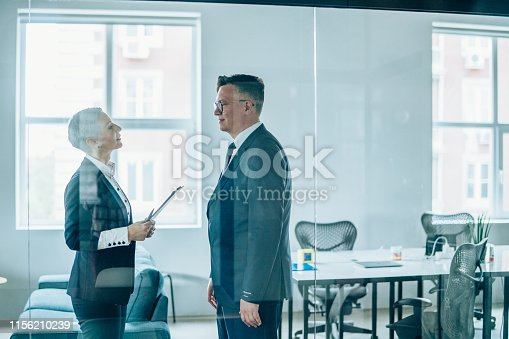 1157633068 istock photo Business partners in discussion 1156210239