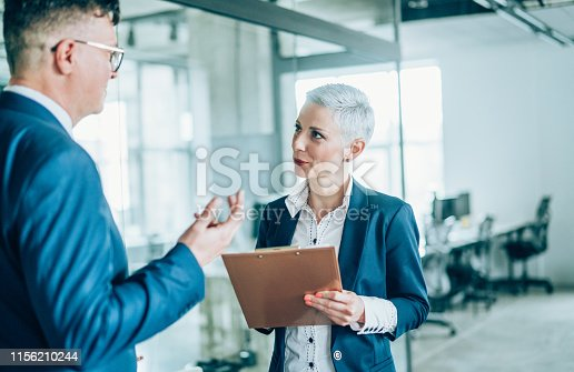 1157633068 istock photo Business partners in discussion 1156210244