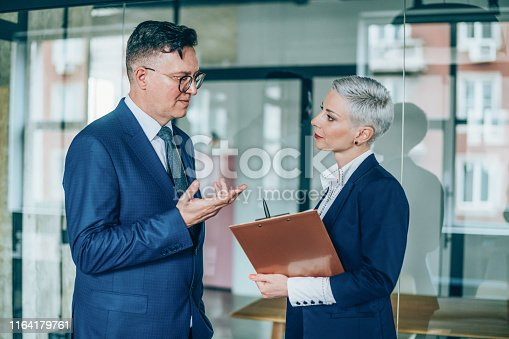 1157633068 istock photo Business partners in discussion 1164179761