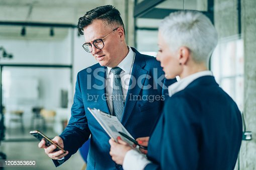 1157633068 istock photo Business partners in discussion 1205353650