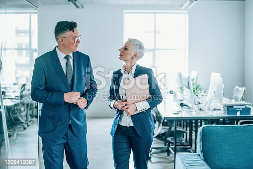 1157633068 istock photo Business partners in discussion 1209419367