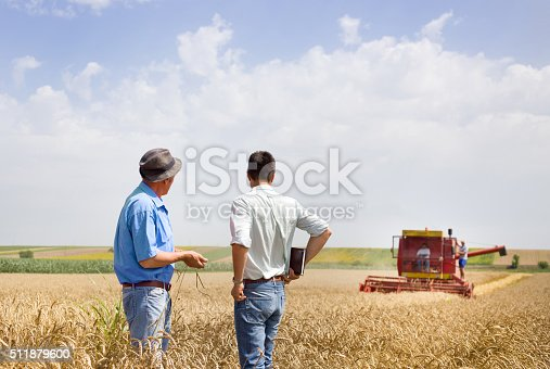 Peasant and business man talking on wheat field during wheat harvest