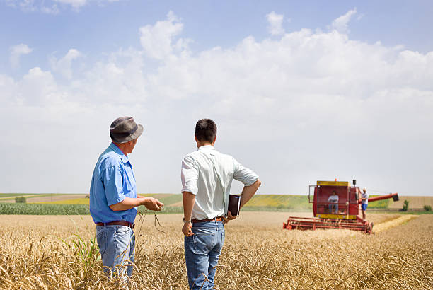 Business partners on wheat field Peasant and business man talking on wheat field during wheat harvest farm worker stock pictures, royalty-free photos & images