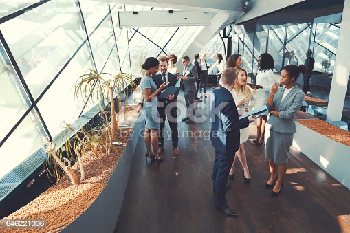 istock Business people at conference, coffee break 646221006
