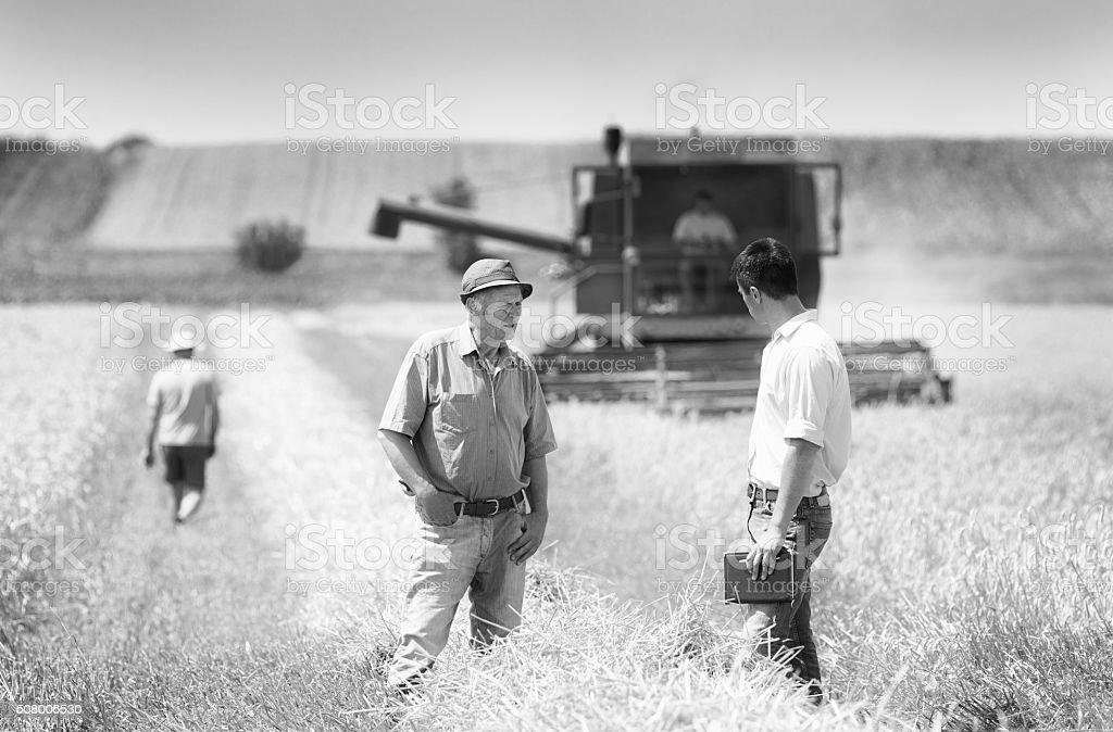 Business people on wheat field