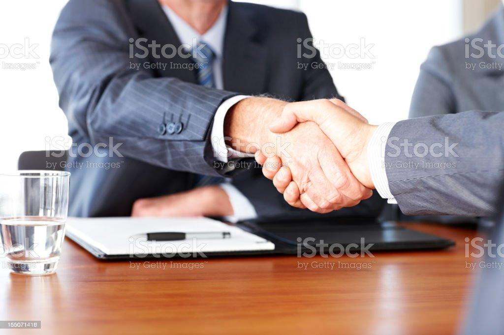 Business People Shaking Hands royalty-free stock photo