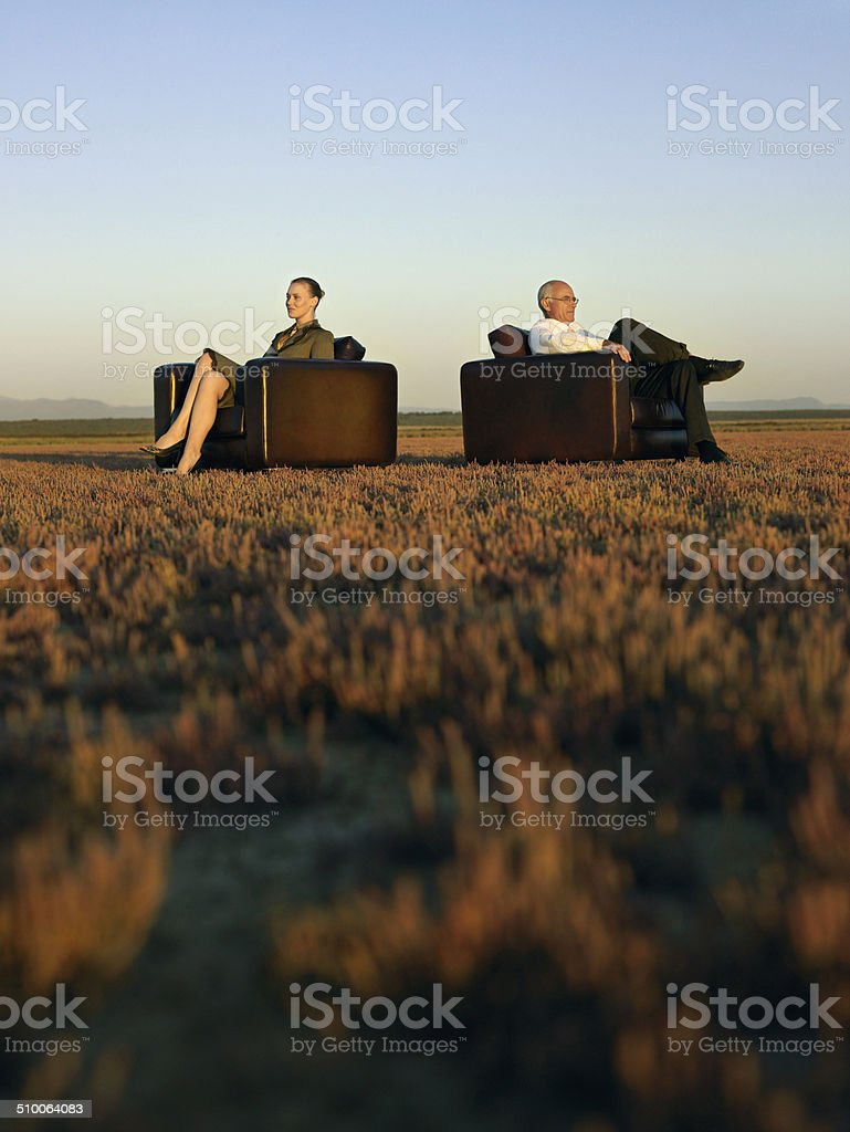 Business People Sitting In Armchairs On Field royalty-free stock photo