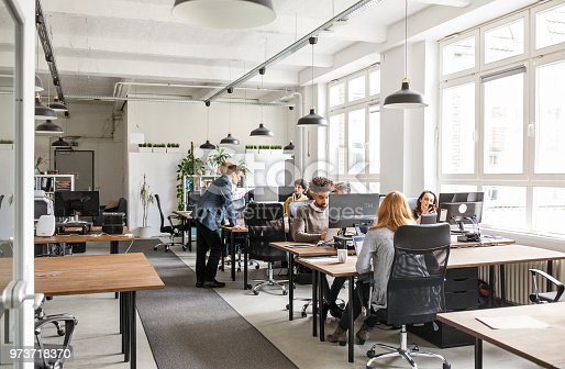 Business people working at desks. Male and female professionals working in modern office space.