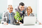 Three cheerful business people working on the laptop. On the desk is the wind turbine and the Bonsai tree.