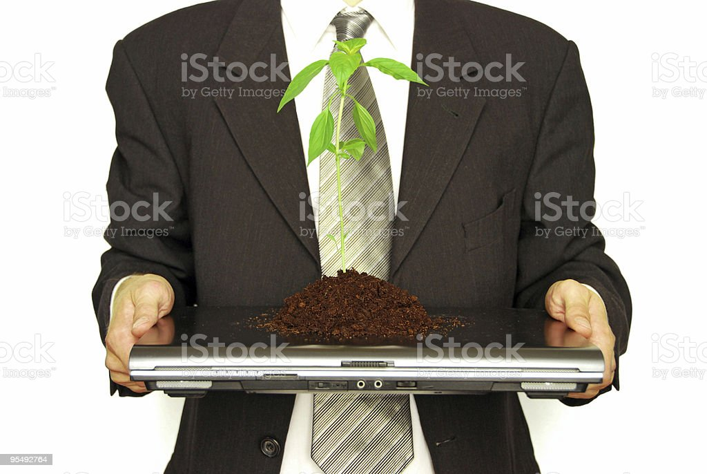 business person with laptop and plant royalty-free stock photo