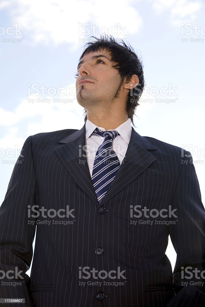 Business Perspective royalty-free stock photo