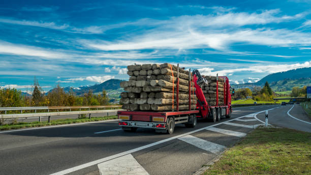 business photos - logging equipment stock photos and pictures