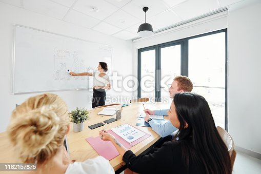 497451790 istock photo Business presentation for business people 1162157875