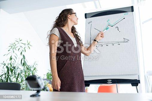 istock Business Presentation 1045982172