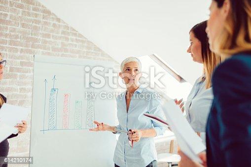 istock Business Presentation 614210174