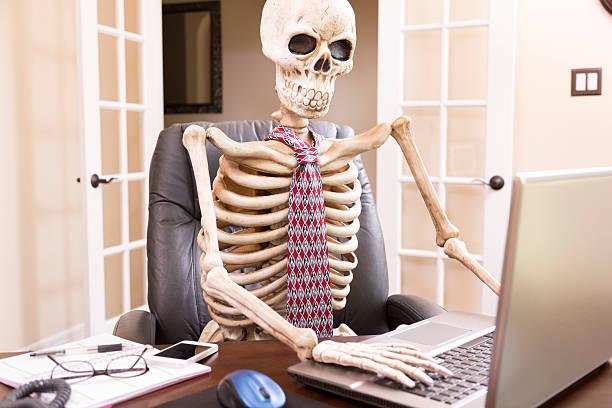 Menschliches Skelett - Bilder und Stockfotos - iStock