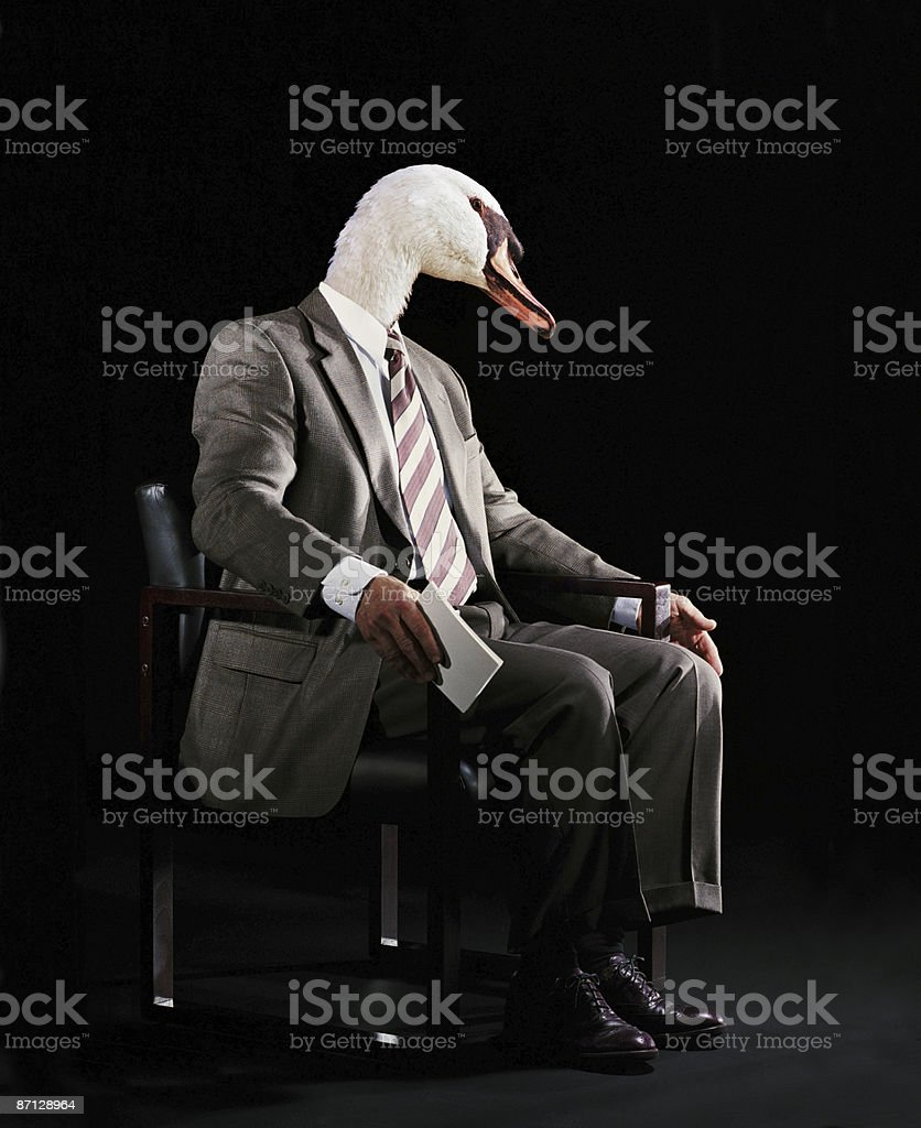 Business Swan royalty-free stock photo