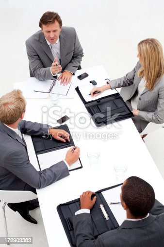 905689676 istock photo Business team in a meeting. 173903383