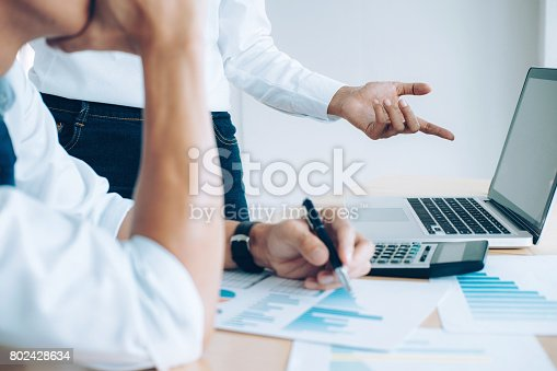 954578184 istock photo Business team present. Investor working new startup project. Finance meeting 802428634