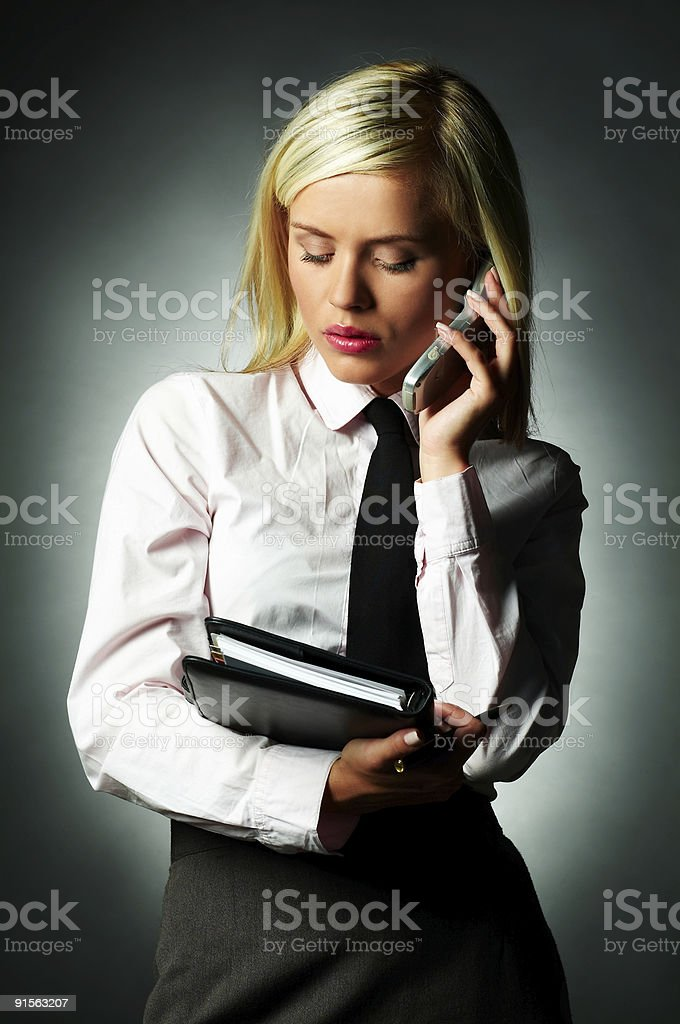 Business Tie royalty-free stock photo