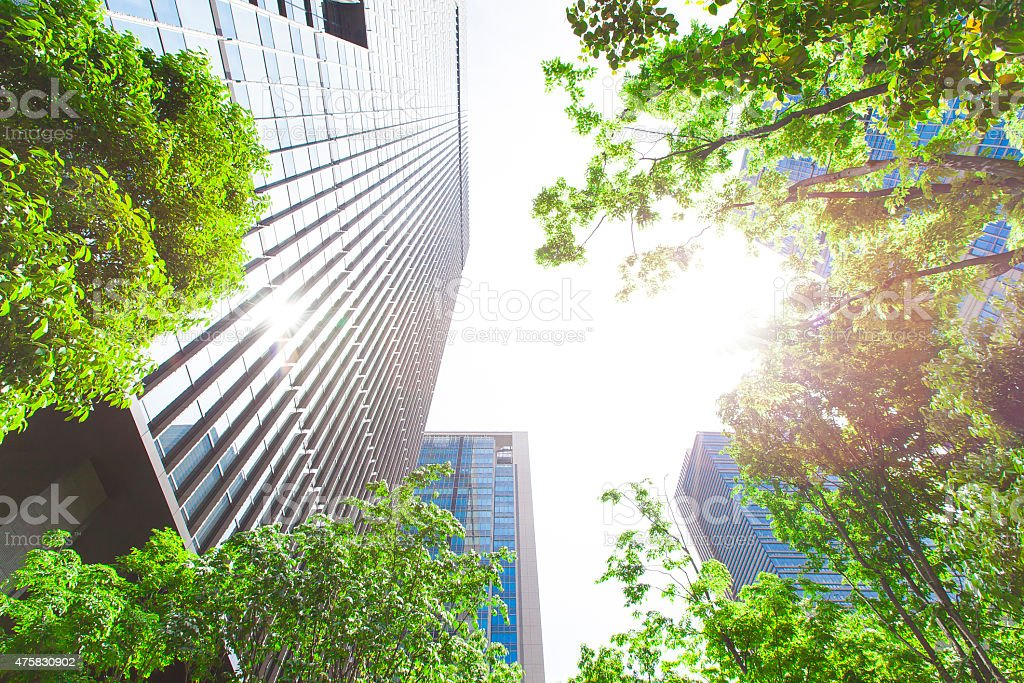 Business towers and Green leaves stock photo