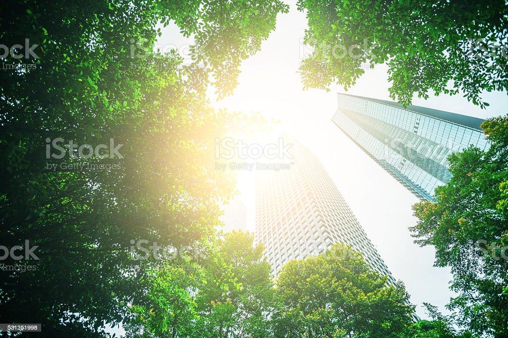 Torres de negocios y verde hojas - foto de stock