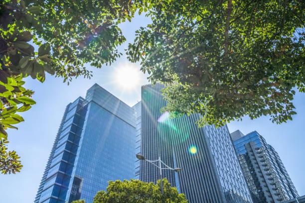 ビジネス amp \;;タワーズと緑の葉 - 緑 ビル ストックフォトと画像