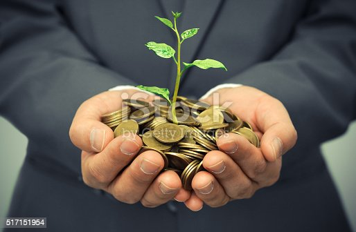 Hnads of businessman holding a young green plant growing on a pile of golden coins / Business growth with environmental concern / Corporate Social Responsibility