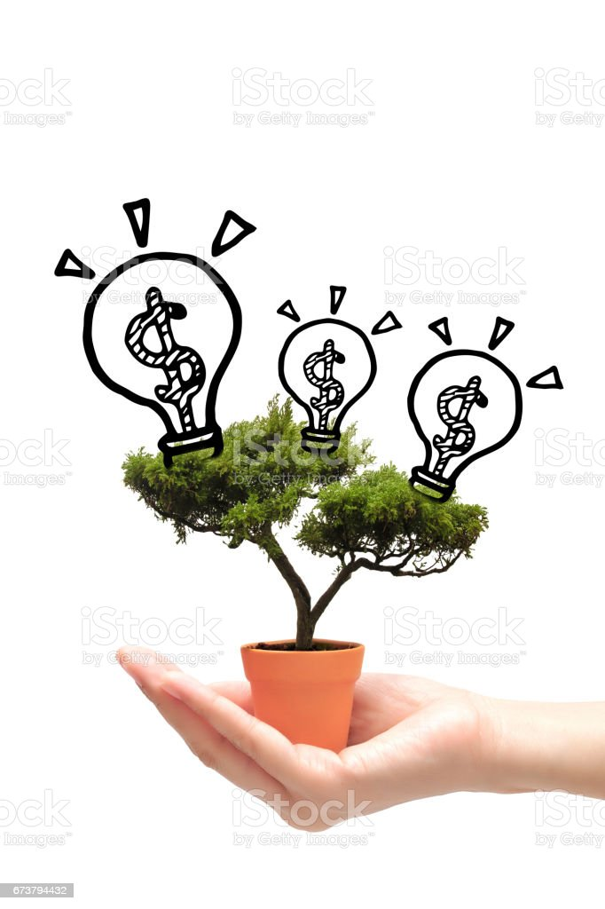 Business woman holding idea money tree in small pot on white background. stock photo