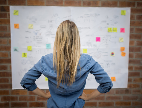 Business Woman Looking At A Wall Chart Stock Photo - Download Image Now