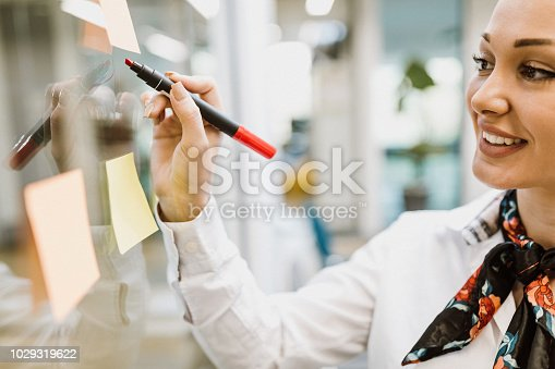 istock Business woman 1029319622