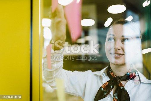 950560696 istock photo Business woman 1029319670