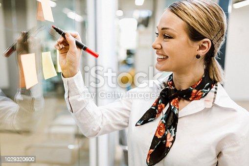 950560696 istock photo Business woman 1029320600
