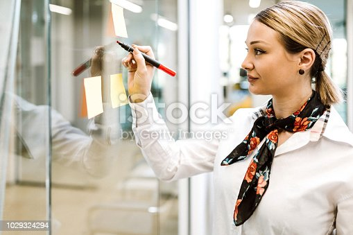 950560696 istock photo Business woman 1029324294