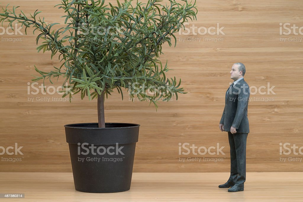 Businessman Action Figure with Miniature Tree in Pot royalty-free stock photo