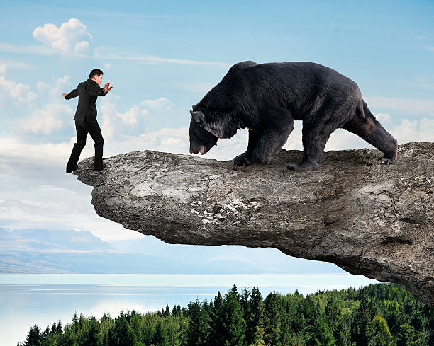 Businessman against black bear balancing on cliff with sky trees stock photo