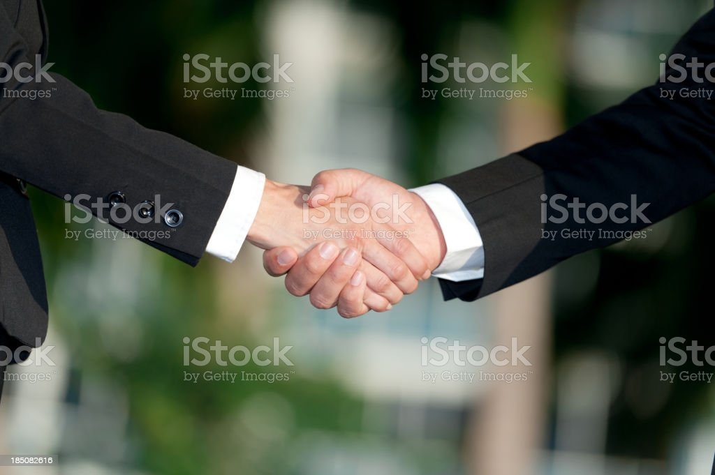 Businessman and Businesswoman Handshake - Royalty-free Adult Stock Photo