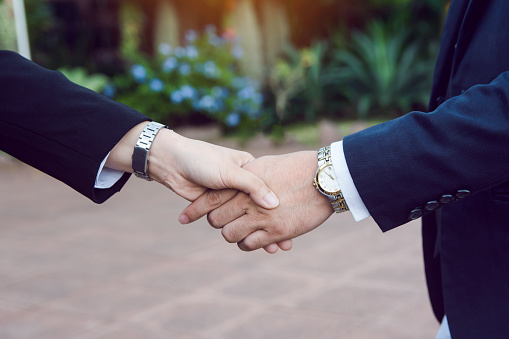 656005826 istock photo Businessman and woman shake hands after a business meeting 1173003040