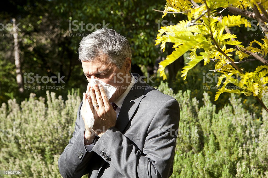 businessman blowing his nose royalty-free stock photo
