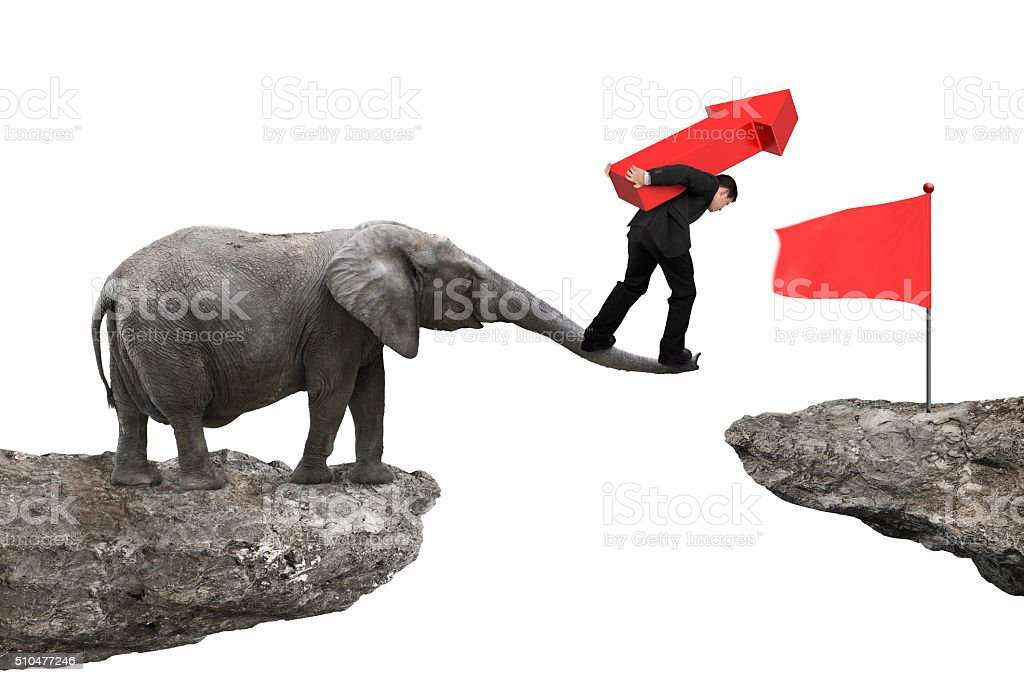 Businessman carrying arrow up balancing on elephant trunk stock photo