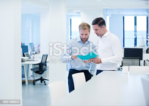 istock Businessman discussing brochure with colleague 493188620