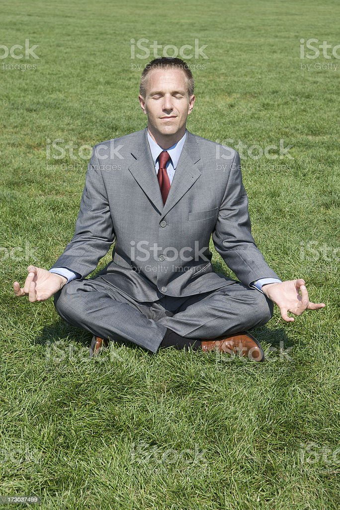 Businessman Does Yoga on Green Grass royalty-free stock photo