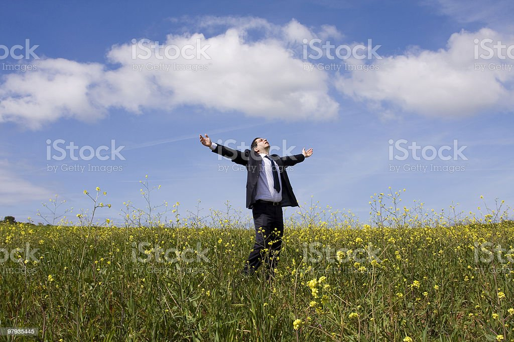 businessman enjoying nature royalty-free stock photo