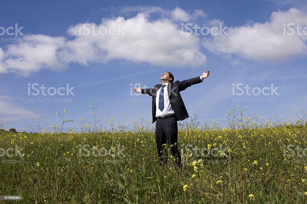 Businessman enjoying nature royalty-free stock photo