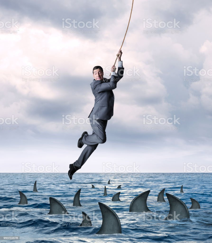 Businessman Hanging From Rope Above Circling Sharks In Ocean stock photo