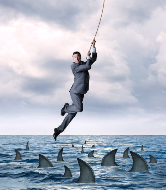 Businessman Hanging From Rope Above Circling Sharks In Ocean A businessman hangs on for dear life from a rope as he swings above a group of circling sharks in the ocean.  He looks down as the fear from falling into the dangerous waters grips his face. surrounding stock pictures, royalty-free photos & images