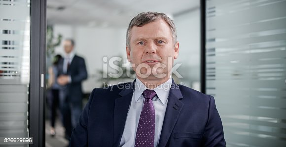 530281723istockphoto Businessman having video conference call from his office 826629696