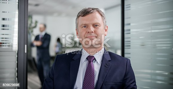 530281723istockphoto Businessman having video conference call from his office 826629698