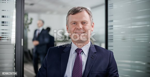 530281723istockphoto Businessman having video conference call from his office 826629704