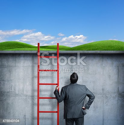 A businessman holding a ladder looks up towards the green pasture above him. His back is facing the camera. The businessman is standing at a lower level when compared to the green pasture. Room for text.